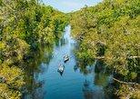 Cruise 'n' Canoe to Australia's Everglades
