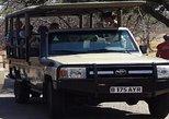 Game Drive in Mosi-Oa-Tunya National Park