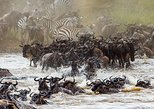 04 Days Tanzania Northern Safaris