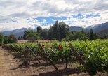 Aconcagua Private Wine Lovers Premium Tour