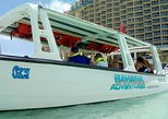 Caribbean - Bahamas: Glass Bottom & BananaBoat - Family Package