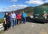 1 Day Private Great Ocean Road Tour (VIP Charter up to 7 People)