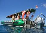 Deluxe West Maui Snorkel Tour