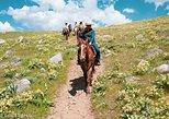 Horseback Ride through the Absaroka-Beartooth Wilderness - One Hour