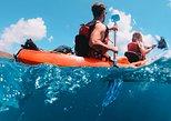 Culebra Kayak and Snorkel Adventure from Ceiba