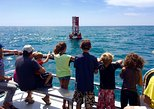 Two-Hour Whale Watching Tours from Oceanside