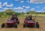 BOHOL BUGGY 30 MINUTES EXPERIENCE