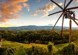 EAST SLOVENIA HISTORICAL CITIES PRIVAT TOUR with local cuisine and wine tasting