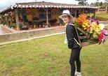 Private Tour: Medellin Flower Experience in Santa Elena