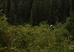 Fly Fishing in crystal clear rivers of the Skykomish Drainage