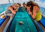 1 hour Narrated Glass Bottom Reef tour to Klein Bonaire