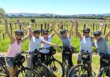 Half-Day Sonoma Valley Bike and Wine Tour (E-bike or Regular)