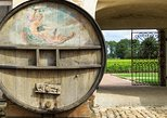 Small Group Burgundy Wine Tour & Tastings from Paris with lunch