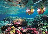 Swim with Manta Rays in Nusa Lembongan From Bali