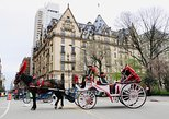 NYC Horse Carriage Ride in Central Park (50 Minutes - Photo Stops)