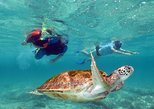 Akumal Sea Turtles ATVs Caverns & Cenotes