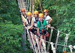 Fully Guided Zipline Canopy Tour through KY River Palisades Lexington KY
