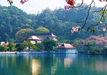 Kandy Highlights : guided private tour