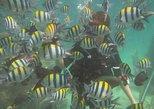 Bali Fun Scuba Dive for beginners in Tanjung Benoa Beach