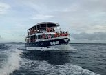 Whale Watching Experience in Mirissa