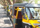 Cochin tuk tuk tours and One hour Backwater Tour with pickup from Cruise ship