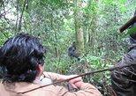 3 (Three) Day Uganda Fly-In to Bwindi Impenetrable Gorilla Trekking Tour