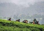 Nuwara Eliya day trip from Kandy