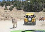Safari Aitana Jeep Tour from Benidorm, Altea Calpe or Albir