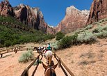 7-Day Tour to San Francisco, Yosemite, Las Vegas, Grand Canyon, and Zion from LA