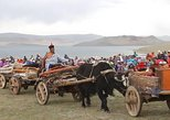Central Mongolia Short Trip