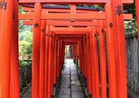 Tokyo Private Tour to Learn History and Shinto