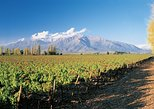 Private Andes Day Trip Maipo Valley with Concha Y Toro Wine Tour