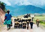 Vale Sagrado com Ollantaytambo e Moray. Cusco, PERU