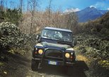 Mount Etna Half day Jeep 4x4 Tour from Catania or Taormina