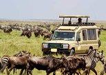 10 Days Best of Kenya Big Five Private Wildlife Safari
