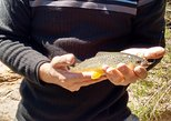 Fly Fishing Tour from Santiago
