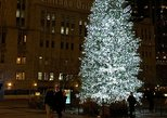 things to do in winter in chicago | browse through the christmas markets