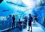 The Blue Planet - National Aquarium of Denmark