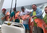 4hr Snapper Trip No catch-No Pay