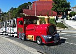 Porto Sightseeing Train Tour and Port Wine Cellars Tour & Tasting