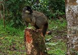 Travel Cheaper to Madagascar - Join a Group