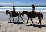 Horse Riding Barrigona Beach Tour, 3h and half