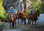Horseback Ridding, Snacks & Water-slides