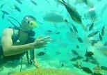 Diving Tour from Antalya