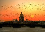 1-Day St Petersburg City Sightseeing Tour with PHOTO STOPS