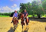 The Authentic Fijian Natadola Beach Horse Riding Adventure