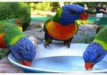 Rockland Bird Sanctuary Private Tour