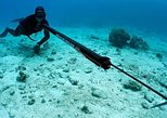 Spearfishing in Cancun