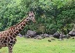 East Java Countryside & Safari Park Tour (from Surabaya)