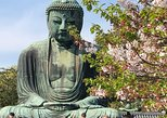 Private 6hr Historic Kamakura: Temples, Shrines and street food walking tour.